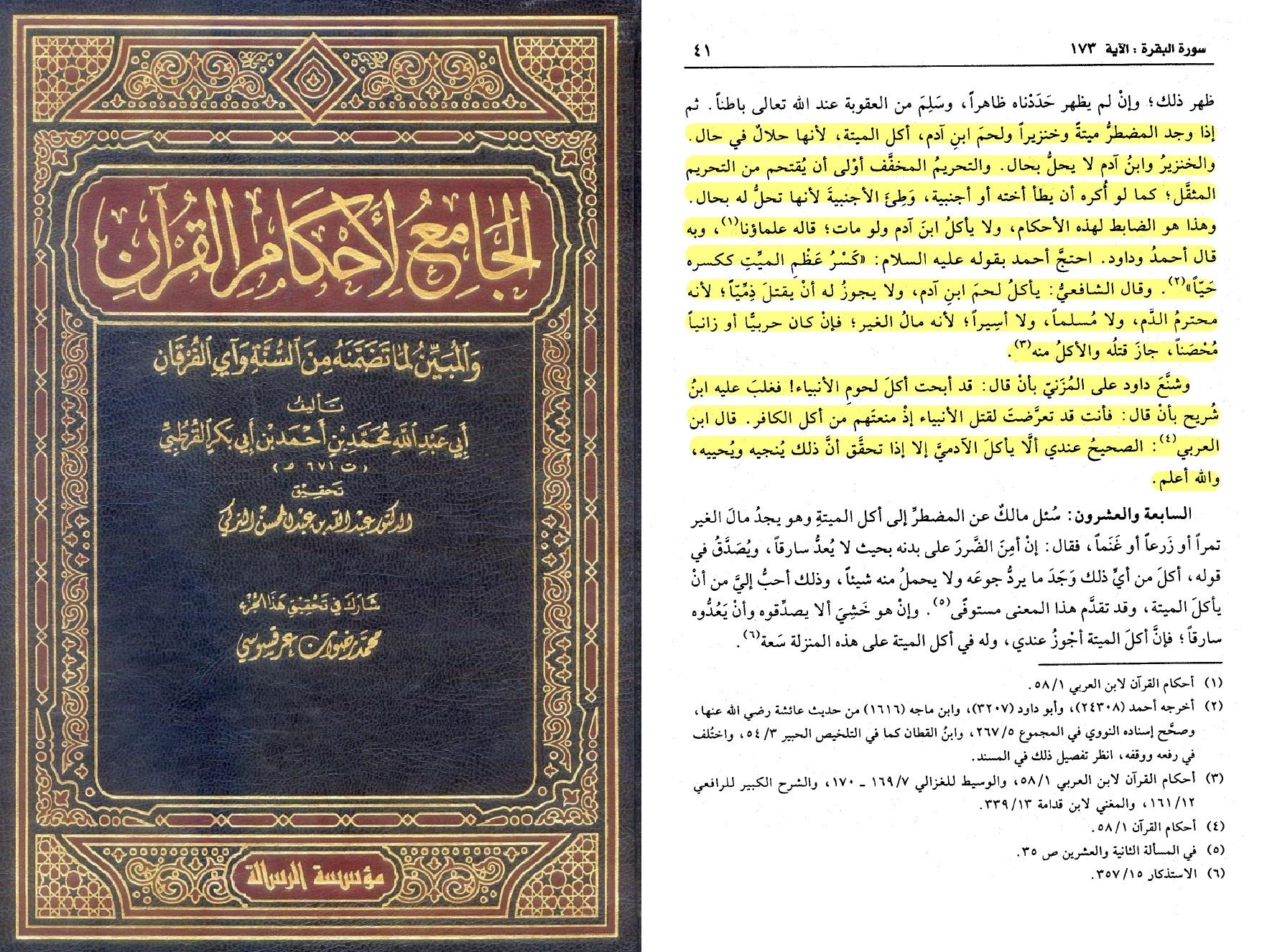 tafsir-e-qortobi-b-3-s-41